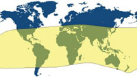 Map 2: Distribution of the Phasmatodea.